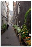 EU-08-Amsterdam_031.jpg