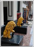 EU-08-Amsterdam_050.jpg