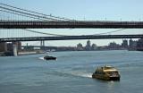 Brooklyn & Manhattan Bridges from Pier 17