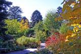 October 2008 Gardens