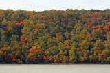 Fall Foliage - New Jersey Palisades from Riverdale, NY Train Station