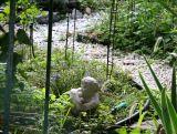 Garden Plot Path