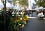 North View of Farmers'  Market Stands at Union Square West