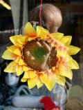 Photographing a Silk Sunflower in an Army/Navy Thriftshop Window