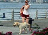 Walking the Dog on Christopher Street Pier