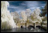 River Coln,Bibury