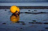 About a buoy