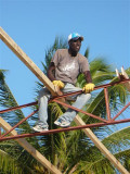 Frantz sitting upon the roof  waiting on the next board to be handed up to him