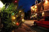 Tree Lights of Castleton