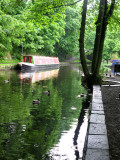 Narrowboat and some Ducks