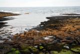 Newbiggin Coastline