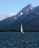 Sailboat on Lake Jackson Vertical.jpg