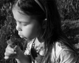Erin Blowing Dandelion.jpg
