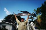Vlad's sailfish