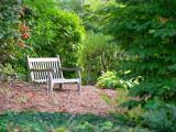 Restful Spot