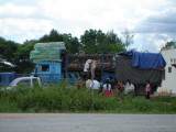 Selling pigs off truck in Xieng Khoang