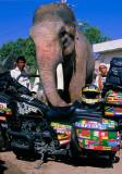 Emilio Scotto in India