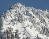 Mt. Raineer heights