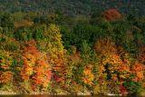 So many colors, Lake Perez, PA