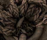 duotoned ropes copy.jpg
