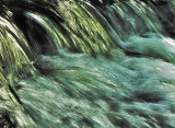 WaterMoving-a-bit.jpg