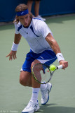 Feliciano Lopez, 2008