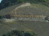 Rhine - Assmannshausen