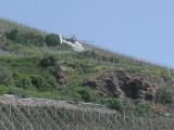 Rhine - Crop Spraying