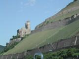 Rhine - Wine
