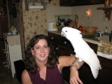 Tiffany with Erica the Cockatoo