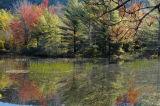 Beaver Pond Acadia '06