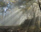 10/8/06 - Shenandoah National Park = Heaven on Earth