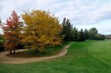 golfpark (eure et loir)en novembre