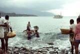 1969 - Espiritu Santo island 54170007