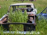 Biofuel driven