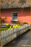 20051 - Ireland - Co.Clare - Bunratty Folk Park - Golden Vale Farmhouse - 2009.jpg