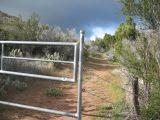 third gate.jpg