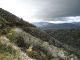 traverse san felipe hills.jpg