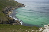 cove between Hor point & Pen Enys with porpoises