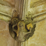 rather unexpected inhabitant of the abbey