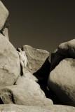 IMG_7152 (Rock Study)