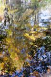 20091017-_MG_3945-2-2.jpg