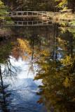 Birdsacre Pond Bridge #7
