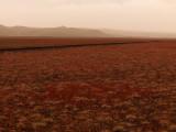 High Desert Color