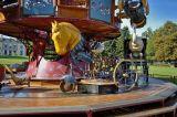 carousel # 16