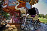 carousel #24