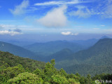 View from the highest point in Mount Brinchang.jpg