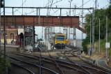 IMGP7871.jpg