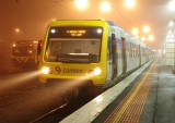 Foggy Glen Waverley