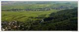 Pano Wine Fields